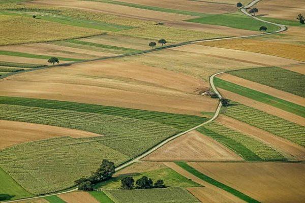 ВСУ форма 6-зем не є доказом, який підтверджує цільове призначення земельної ділянки.
